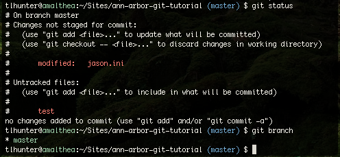 git colored output
