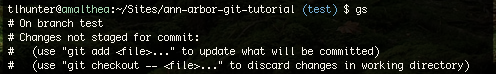 notice how the gs command is the same as git status